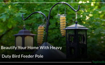 Heavy Duty Bird Feeder Pole
