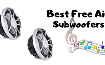 8 inch free air subwoofer